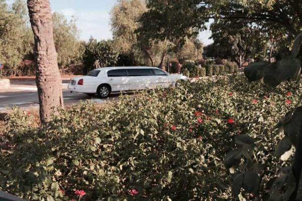 alquiler de limusina blanca en alicante lincoln town 6 bodas eventos rodajes jj dluxe cars
